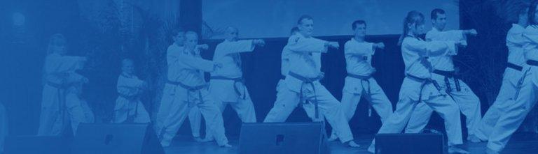 Online Mitgliederversammlung am 05.03.2021 -Taekwondo-Abteilung kommt digital zusammen